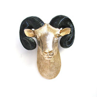 Large Faux Taxidermy Ram/Big Sheep Horn CUSTOMIZED in ANY 2 COLORS wall mount hanging home decor:  Rodger in gold with black horns