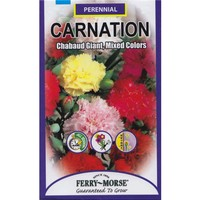 Ferry-Morse Carnation Chabaud Giant Mixed Colors Seed-1028 at The Home Depot