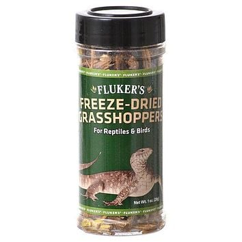 Flukers Freeze-Dried Grasshoppers