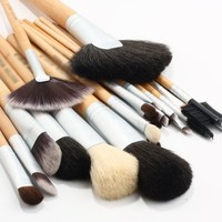 BOSTON WORLD Golden 24 PCS Professional Makeup Brush Set Include Golded Pouch