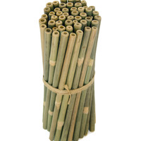 Bamboo Drinking Straws 25-Pack