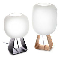 TOAD table lamp