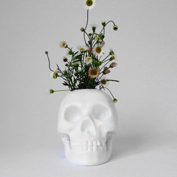 Skull Brush Holder, Skull, Skulls, White Human Skull, Skull Figurine, Skulls, Office Decor, Gift for Her, Hodi Home Decor, Human Skull,