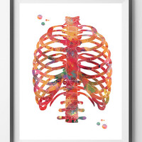 Rib cage watercolor print anatomy art thorax poster medical art skeletal system thorax print vertebral column ribs sternum wall decor poster