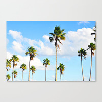 North Beach Palms 2 - Canvas, Blue and Green Palm Trees Landscape Wall Art Hanging Beach Surf Gallery Wrap. In 8x10 11x14 16x20 20x24 24x36