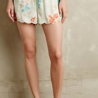 Linnette Tap Shorts by Eloise Mint