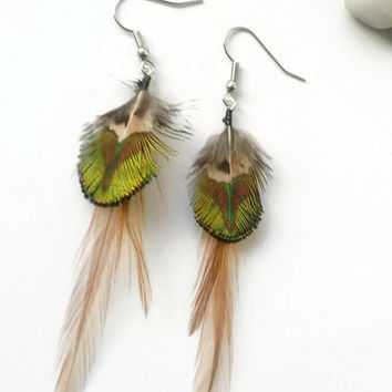 Peacock and Brown Feather Earrings