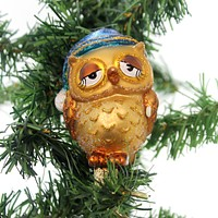 Old World Christmas SLEEPY OWL Glass Wisdom Thoughtful 18119