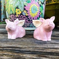 Flying Pigs With Wings Salt and Pepper Shakers