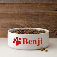 Colorful Classic Large Dog Bowls - Happy Bars