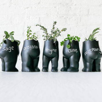 """SET OF 5 - Tushiez Vase for Greens - Size 5"""" - Black Ceramic or White Porcelain - Matte Glossy -Plant Herb Containers- Plants not Included"""