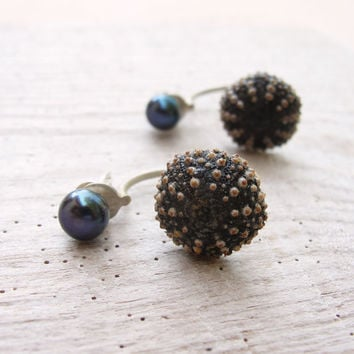 Brown Sterling silver Sea urchin Earrings with Pearls