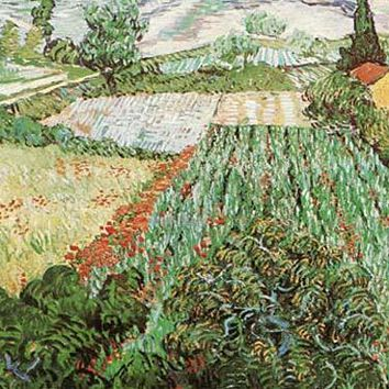 Field of Poppies by Vincent Van Gogh Fine Art Print