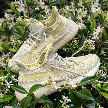 Adidas Yeezy Boost 350 V2 Antlia Men's and Women's Sneakers Shoes