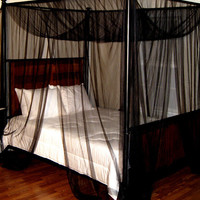 Black Palace Four-Post Bed Canopy | zulily