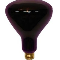 Black Light Spot Light 150 Watt Bulb