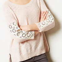 Talise Pullover