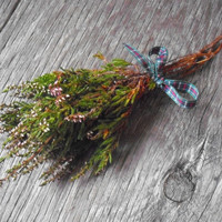Lucky White Heather - Wild harvested in Scottish Highlands Faery Charm Protection pagan magic Burns Night