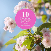 Set of 10 blossom backgrounds textures Instant Digital Download Art Photography Printable, wedding floral photography, blooming garden