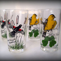 Vintage 70's Bird Themed Glasses Blackbirds and Gold Finch Tumblers Set of 4