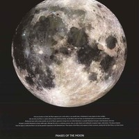 The Moon Lunar Phases Poster 24x36