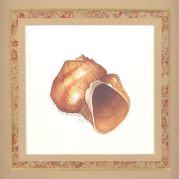 """Moon Shell 10"""" x 10"""" custom matted lithograph"""
