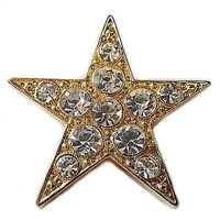 Park Lane Jewels Star Brooch Vintage Pin Gold Tone Crystals Round Signed p231