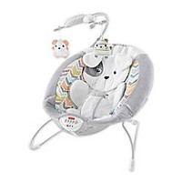 Fisher-Price® Sweet Snugapuppy Dreams Bouncer