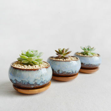 Glazed Ceramic Succulent Planter-Cacti Pot-Zen Minimalist-Home Decoration
