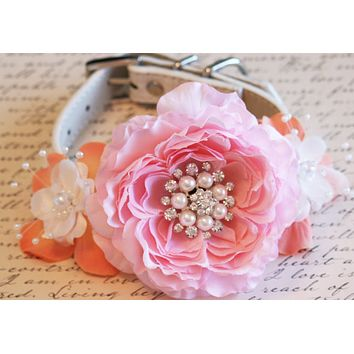 Pink and Peach Floral Peonies Dog Collar, Pet Peach and Pink Wedding, Dog Lovers