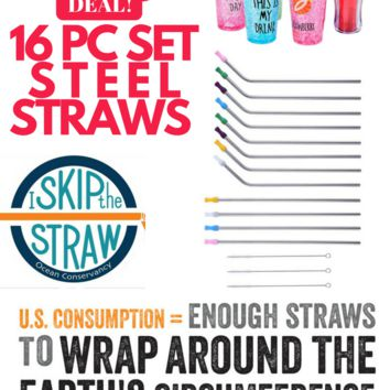 16 PC Steel Straw Cap & Brush SET