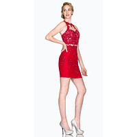 Halter Fitted Mini Cocktail Dress with Sheer Midriff Red