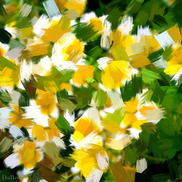 Abstract Summer Flowers Photograph, Photographic Wall Art, Nature, Vegetable Garden.