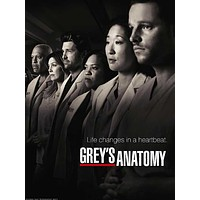 Grey's Anatomy 27x40 TV Poster (2005)