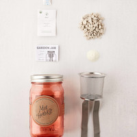 Modern Sprout Self Watering Garden In A Jar | Urban Outfitters