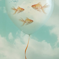 balloon fish 03 Canvas Print by Vin Zzep
