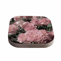 """Susan Sanders """"Blush Pink Flowers"""" Floral Photography Coasters (Set of 4)"""