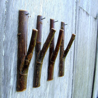 $32.00 4 Rustic Wall Hooks by TheBentTreeGallery on Etsy