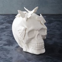 Skull + Moths Object