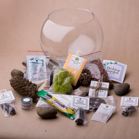 Extra Large Terrarium Kit Contents  You Provide The by jpants4sale