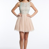 Two-Tone Lace and Mesh Dress