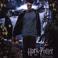 Harry Potter and the Prisoner of Azkaban (French) 11x17 Movie Poster (2004)