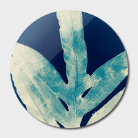 «Green Fern at Midnight Bright, Navy Blue», Limited Edition Disk Print by Alicia Jones - From $65 - Curioos