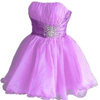 Faironly Zm3 Homecoming Mini Party Cocktail Dress (XS, Lilac)