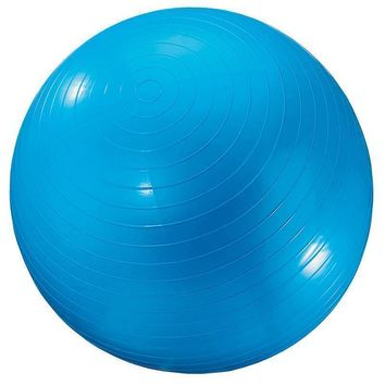 Exercise Ball 24 In Blue