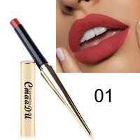 New 12 color Fashion Makeup Matte Lipstic Moisturizer Lipsticks Waterproof Long-lasting Easy to Wear Cosmetics Lipgloss Make up