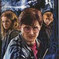 Harry Potter Deathly Hallows 2010 Movie Poster 22x34