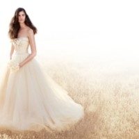 WHITE by Vera Wang Wedding Gowns, Bridesmaid Dresses and Bridal Accessories