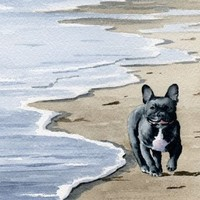 """""""French Bulldog at the Beach"""" Dog Art Print Signed by Artist DJ Rogers"""