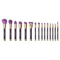 Sonia Kashuk Limited Edition 15pc Professional Brush Set Celebrating 15 years of Award Winning Brushes